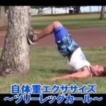 【SAWAKI GYMチャンネル】自体重エクササイズ~ツリーレッグカール~