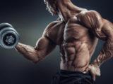 筋肉を増やすならアミノ酸をとろう!01